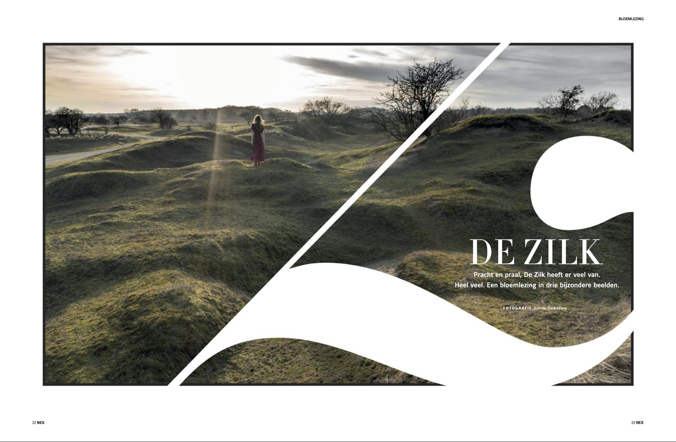 NEX17-De-Zilk